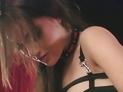 Babe, Lesbian, Blowjob, Pornstar